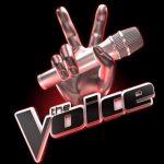 Harrison Craig da vittima dei bulli a star di The Voice