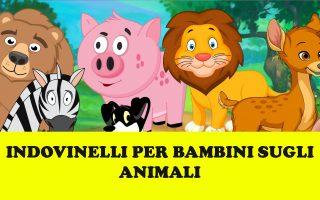 Indovinelli Sugli Animali Per Bambini Nobullismoorg